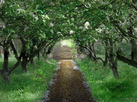 Orchard Garden by Galician Garden An Orchard