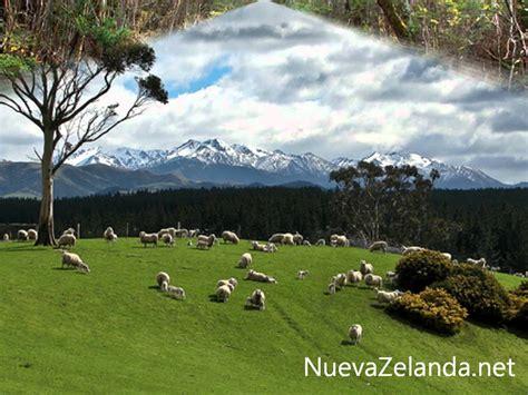 imagenes de otoño naturales paisajes naturales nueva zelanda youtube