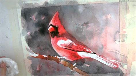 watercolor tutorial on youtube 7th installment cardinal watercolor painting tutorial