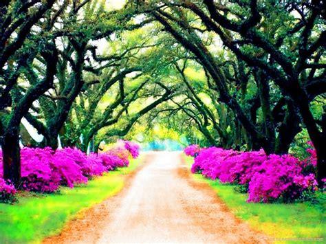 imagenes espirituales paisajes 5 hermosas fotos de paisajes fotos paisajes hermosos