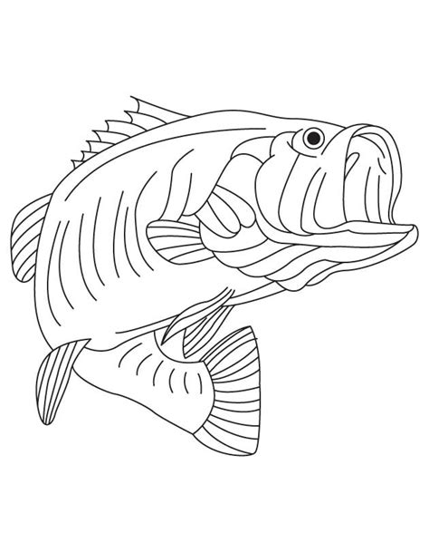 bass fish coloring pages free largemouth bass coloring page az coloring pages