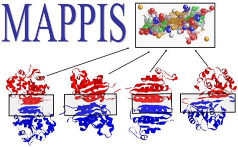 r protein alignment mappis alignment of protein protein interfaces