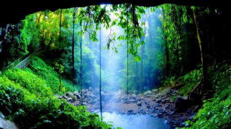 green wallpaper australia waterfalls wallpapers hd widescreen desktop backgrounds
