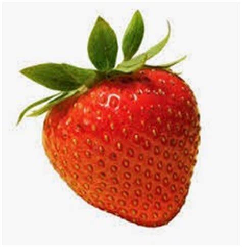 kumpulan foto buah buahan terlengkap aneka gambar jenis buah buahan lengkap animasi bergerak