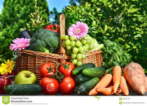 Variety Of Fresh Organic Vegetables And Fruits In The Garden Fruits And Vegetables