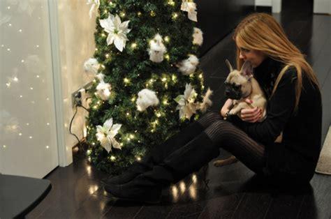 perro coje a mujer bonita un perro se coje a una mujer html