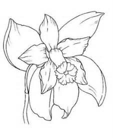 flores colorir desenho orquidea brinquedos papel