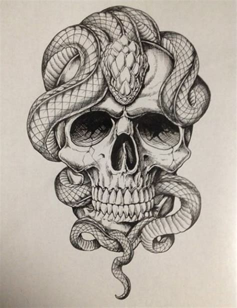 skull rose snake tattoo best 25 skull sketch ideas on skull