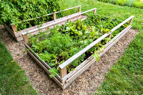 How To Grow A Vegetable Garden Gardening Tips For Brown How To Grow A Raised Bed Vegetable Garden