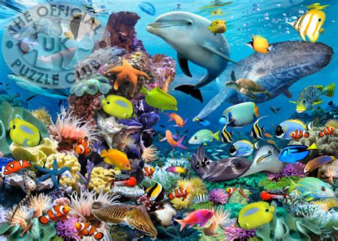 Puzzle Sea ravensburger jigsaw puzzles jewels of the sea 1000pc at
