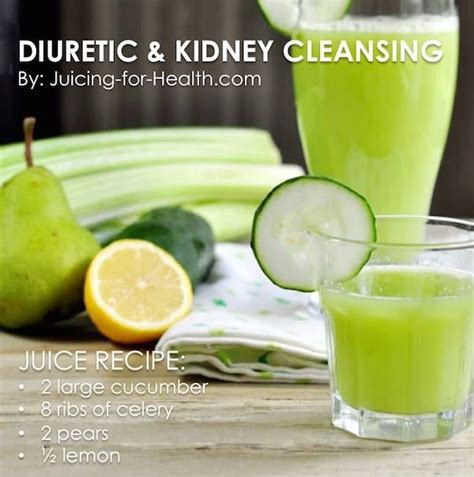 Kidney Detox Ingredients by Best 25 Kidney Cleanse Ideas On Kidney Detox