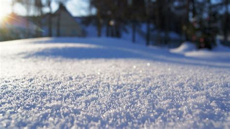 picture of snow fresh snow close up wallpaper 16799