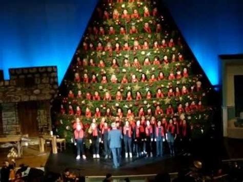 2012 vancouver singing tree 3