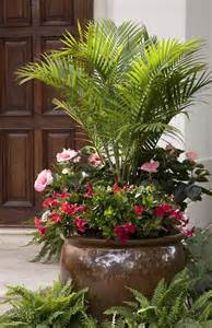 potted patio plants 25 best ideas about porch plants on front
