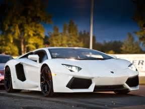 And White Lamborghini White And Gold Lamborghini Aventador White Lamborghini Hd