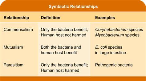 exles of symbiotic relationshipsdating free