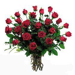fiori a gambo lungo mazzo di rosse a gambo lungo la primavera fiori