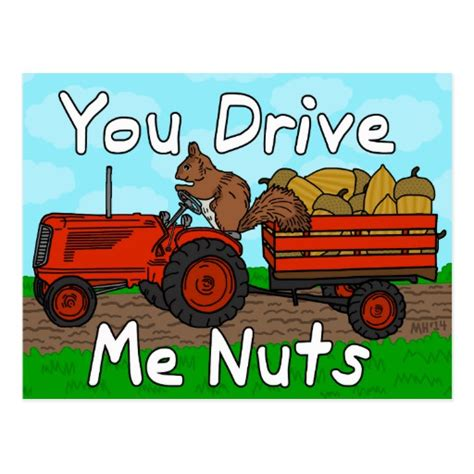 drive you nuts funny you drive me nuts squirrel pun valentine s postcard
