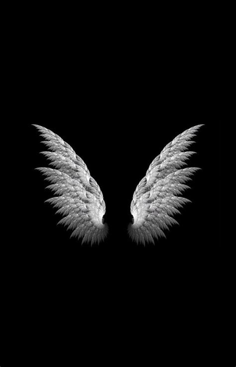 wings background framed print white wings on a black background
