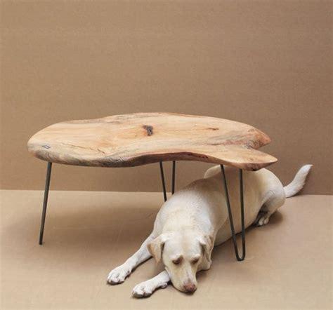 pecan wood coffee table 25 best pecan wood ideas on wood slab table