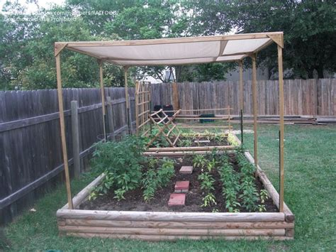 Vegetable Garden Shade Structures Raised Garden With A Shade Cloth To Protect The Veggies