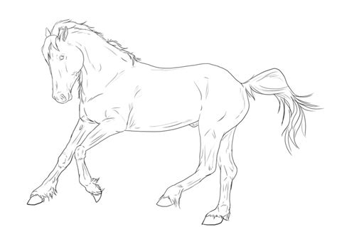 connemara pony coloring pages connemara lines for z by s1088 on deviantart