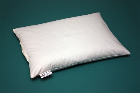 Pillow Best by Best Buckwheat Pillows Tedx Decors The Useful Of