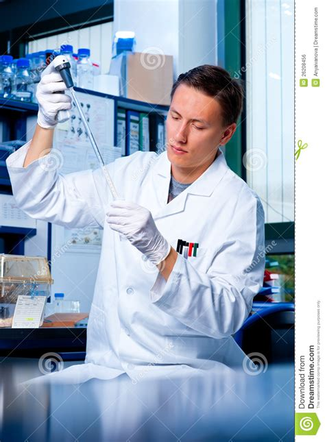 In The Lab scientist works in the lab royalty free stock
