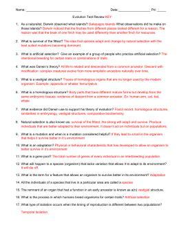 Evolution And Classification Worksheet Breadandhearth