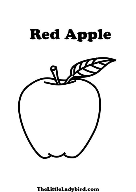 red apple coloring page free fruits coloring pages thelittleladybird com