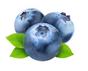 blueberry on transparent background food amp drink photos