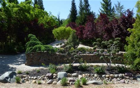 maple rock gardens the farmer fred 174 rant northern california s horticultural