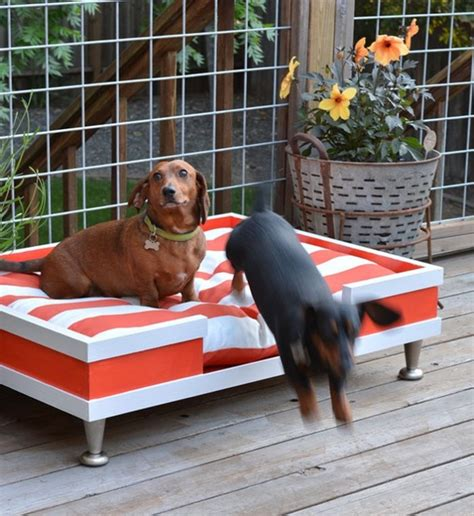 20 Cool Outdoor Dog Beds That Are Also Comfortable Outdoor Furniture For Dogs