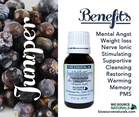 Emotional Detox Essential Oils by Juniper Berry Essential Is Great For Emotional Issues
