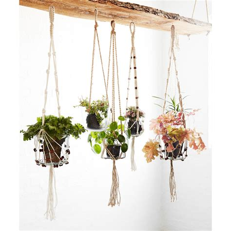 hanging glass planters hanging glass planter with jute cord by out there interiors notonthehighstreet