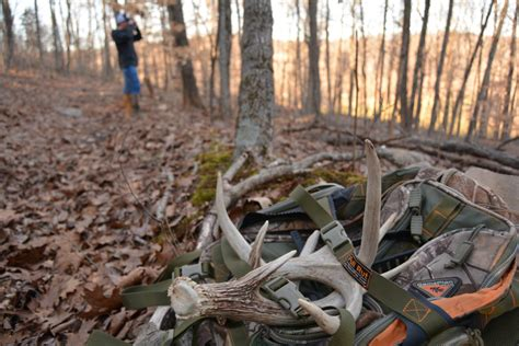 Deer Shed Tips when and where to look for shed antlers hunters tv