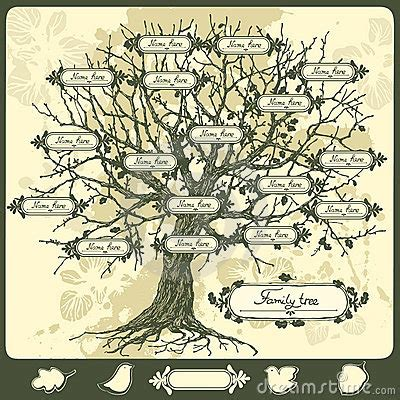 Family Tree Royalty Free Stock Photo Image 19030795 Vintage Family Tree Royalty Free Stock Images Image 32018779