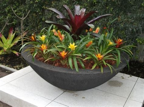 Large Outdoor Bowl Planters by Image Gallery Large Planter Bowl