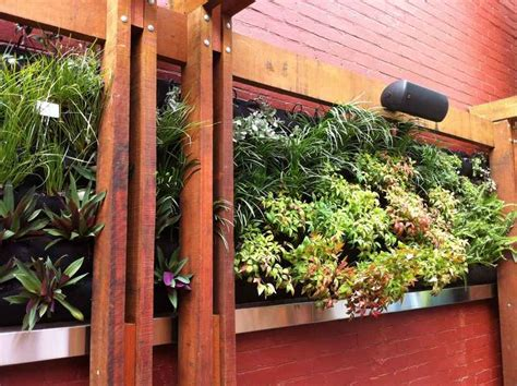Vertical Gardens Perth Ban Store In Perth Louisiana Brigade