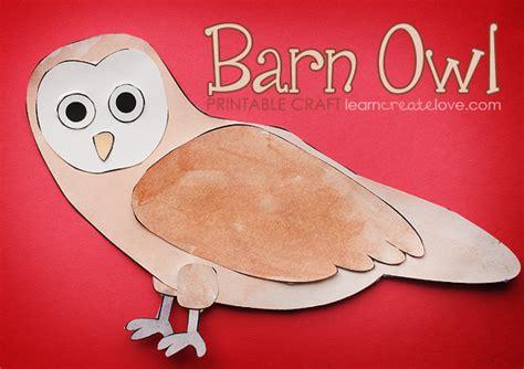 printable barn owl pictures printable barn owl craft