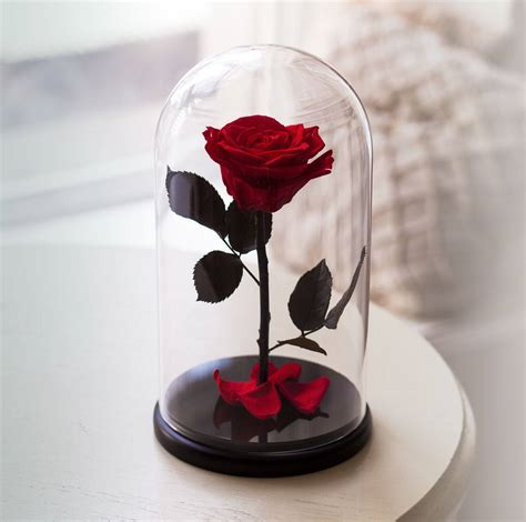 forever rose in glass beauty and the beast rose live forever rose in glass bella