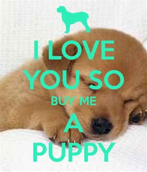 buying puppies i you so buy me a puppy poster kate radelja keep calm o matic