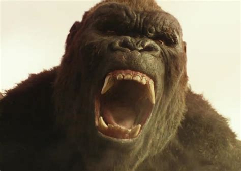 what of is kong this kong skull island trailer is cursed