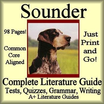sounder book report sounder novel study unit literature activities and the