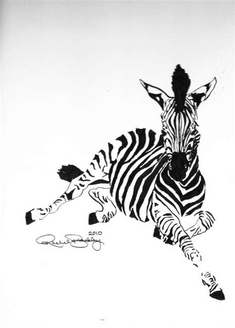 zebra tattoo pen 17 best images about paintings zebras on pinterest