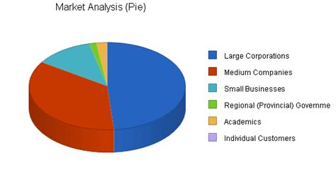global marketing plan template global marketing sle business plan market analysis