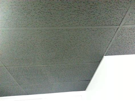 Painting Ceiling Tile Grid by Ask The Commercial Interior Designer