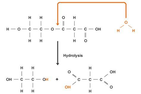 bbc intermediate 2 bitesize chemistry plastics and