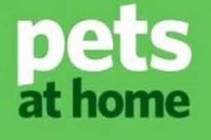 pets at home pets at home vets and groomers theme song theme