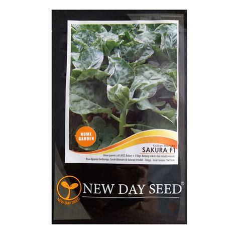 Benih Selada Dacosta New Day Seed 1 Gram benih kailan f1 2 gram new day seed bibitbunga